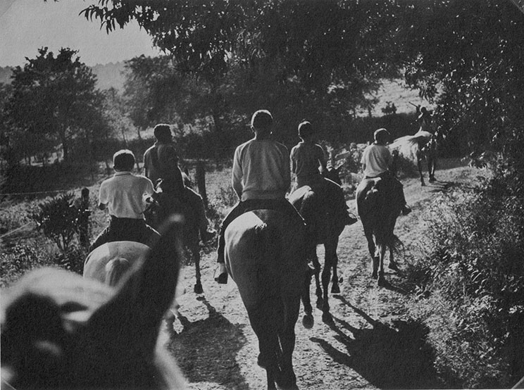 Campers ride horses on a trail