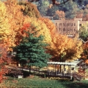Fall foliage on the App State campus