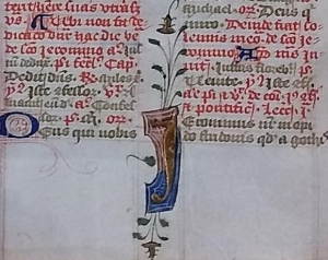 Close-up of the Sarum Rite breviary leaves