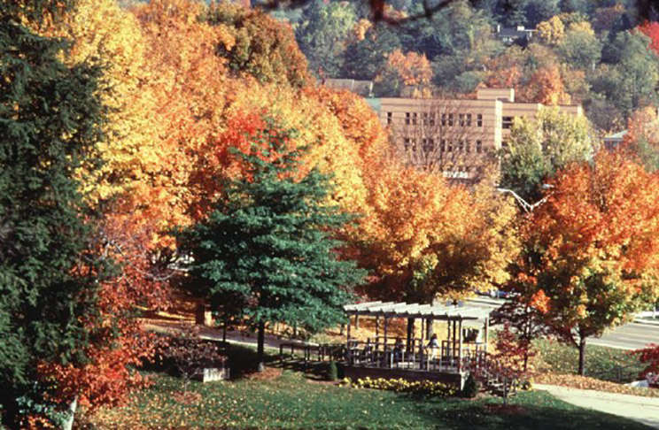 Fall foliage on App State's campus